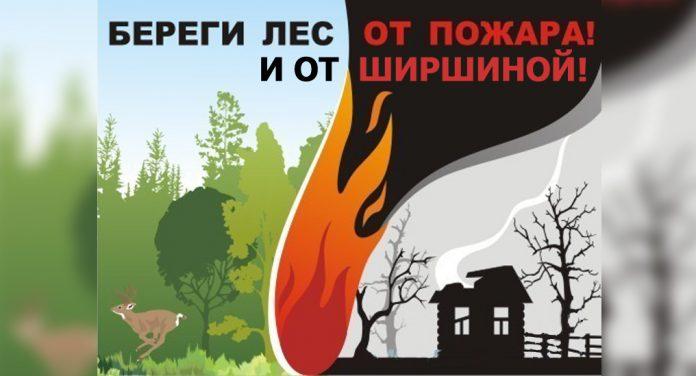 Плакат: Береги лес от пожара и от Ширшиной