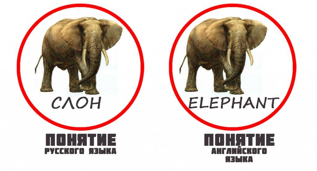 public-info-elephant