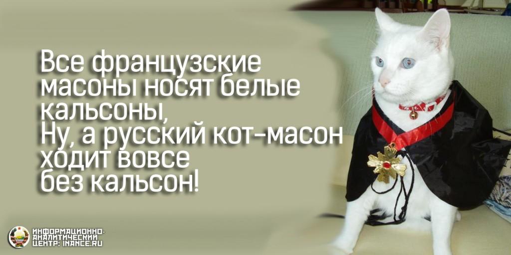 Русский кот-масон