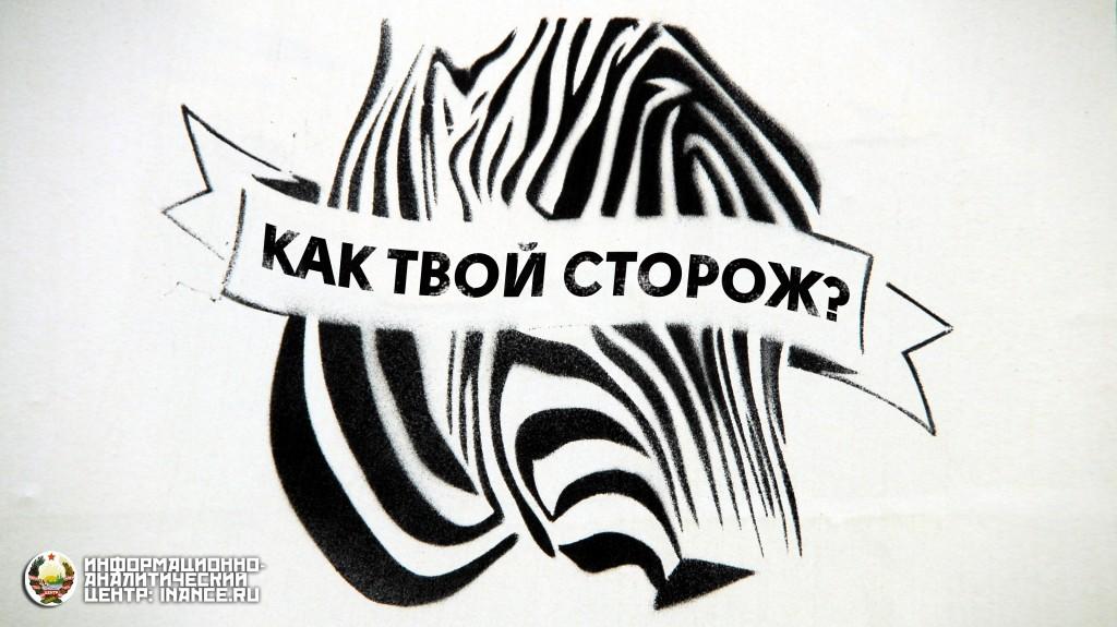 public-zebra-storoz