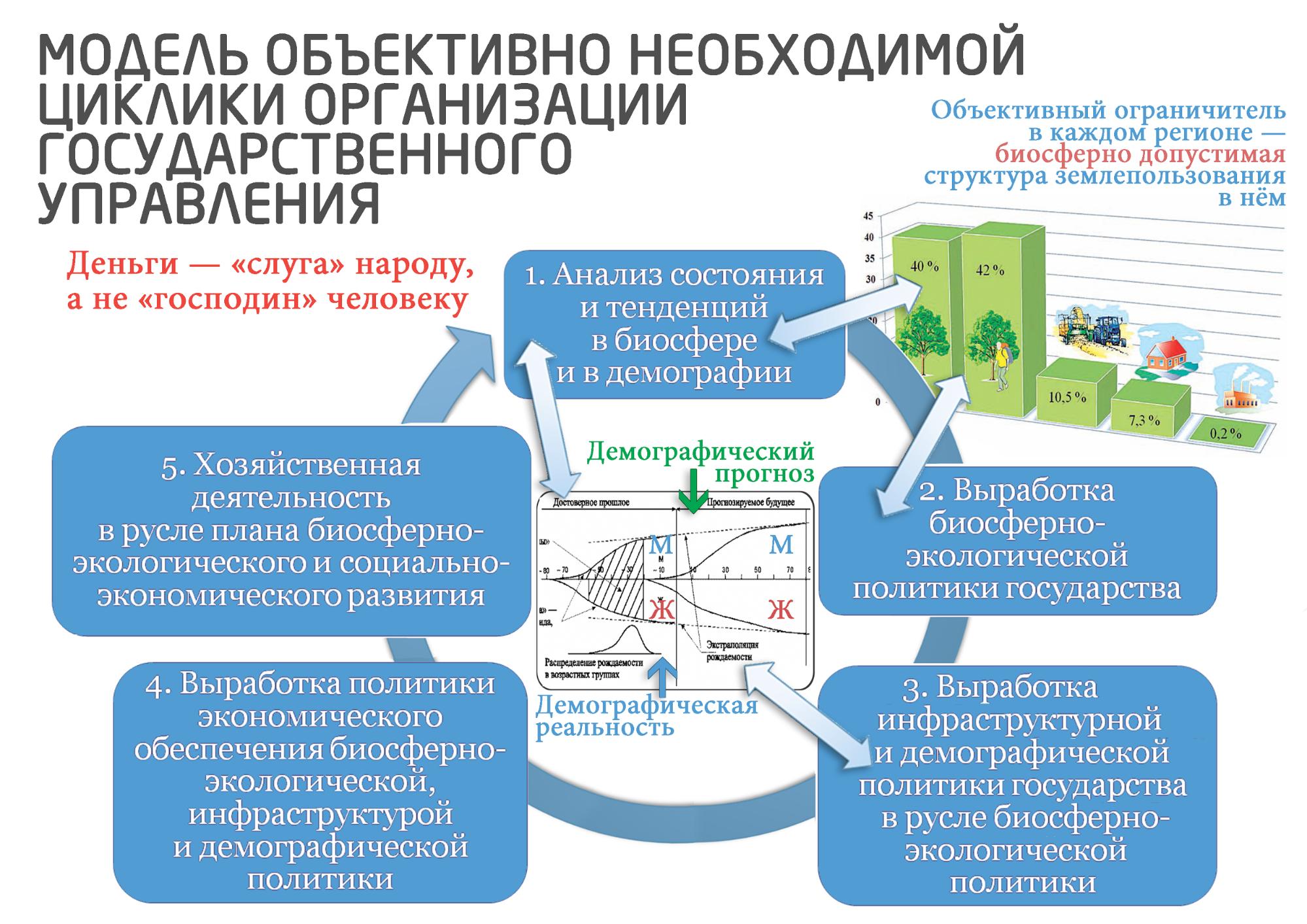 model-cikliki