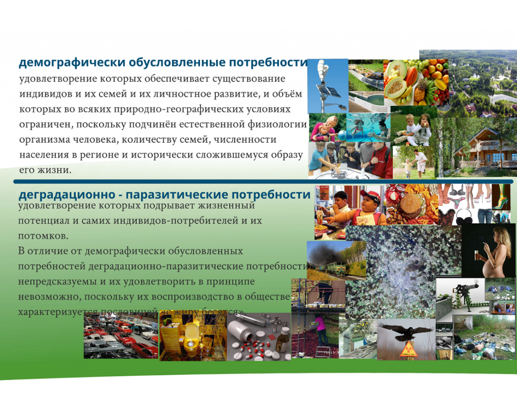 prostranstvennoe-razvitie-rossii-04