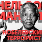 Нельсон Мандела, Мандела, апартеид