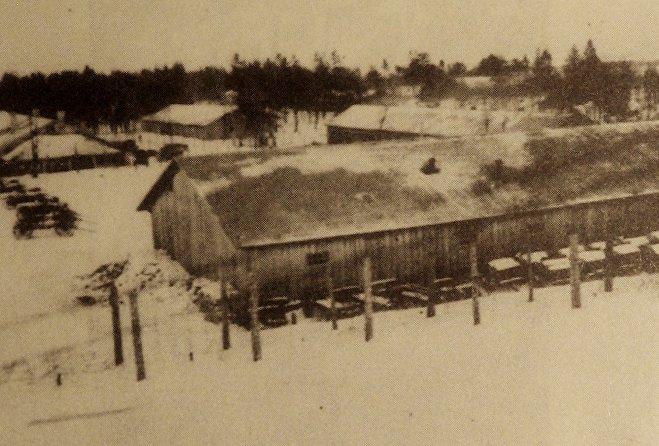 Бараки Шталага-352 в Лесном лагере в Масюковщине, зима 1941 —42 года