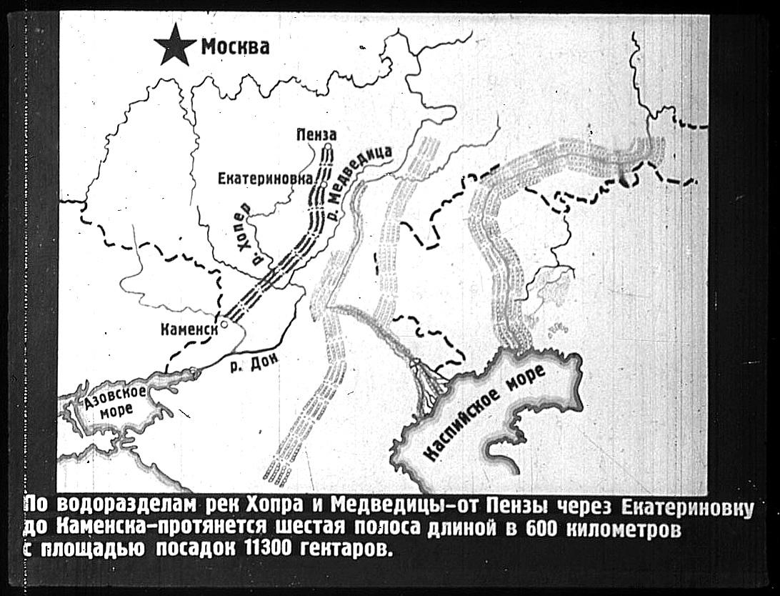 Проект лесополосы по берегам рек Хопра и Медведица