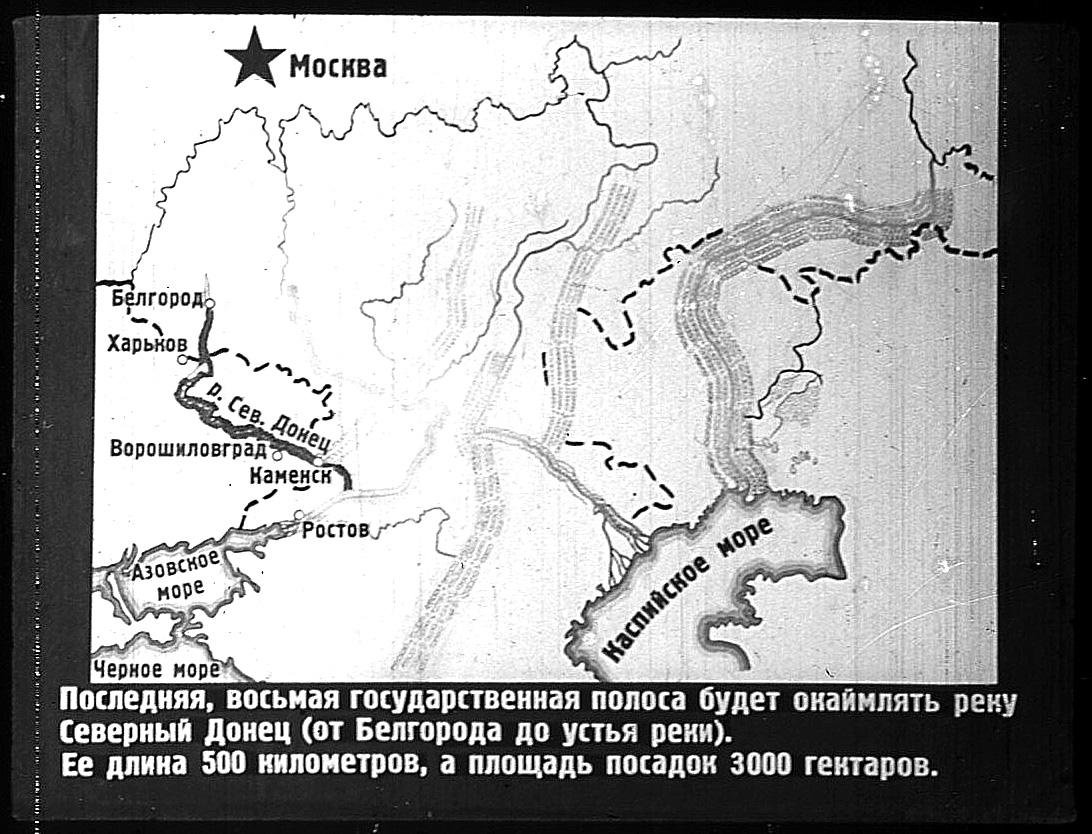 Проект лесополосы по берегам реки Северский Донец