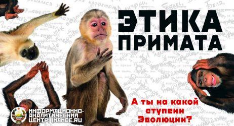 141211-etika-primata